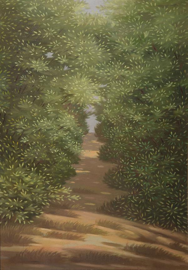 Viale con alberi